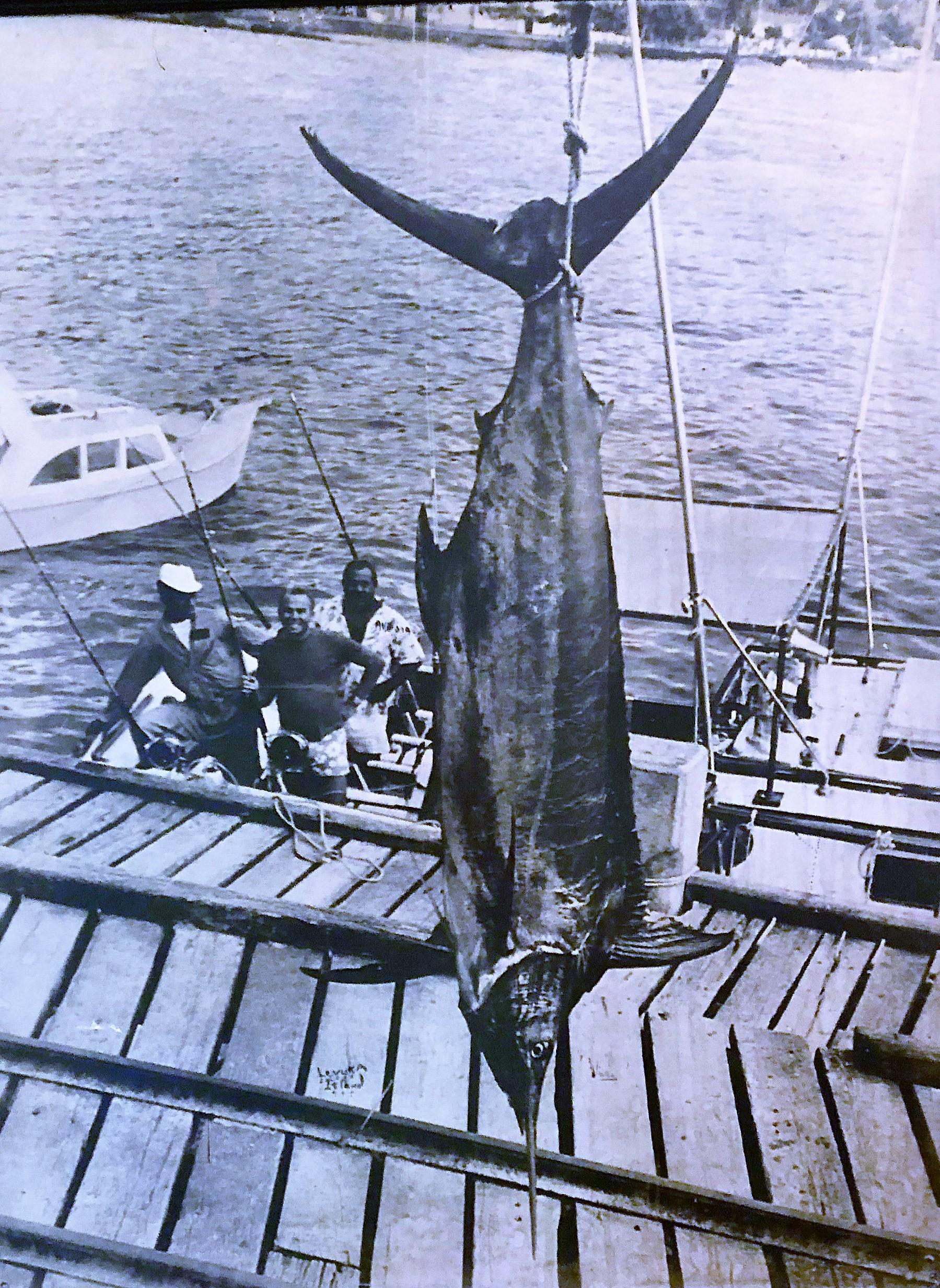 Big fish-1